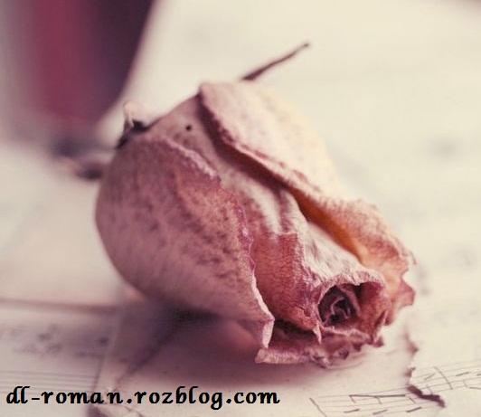 دانلود رمان روژا