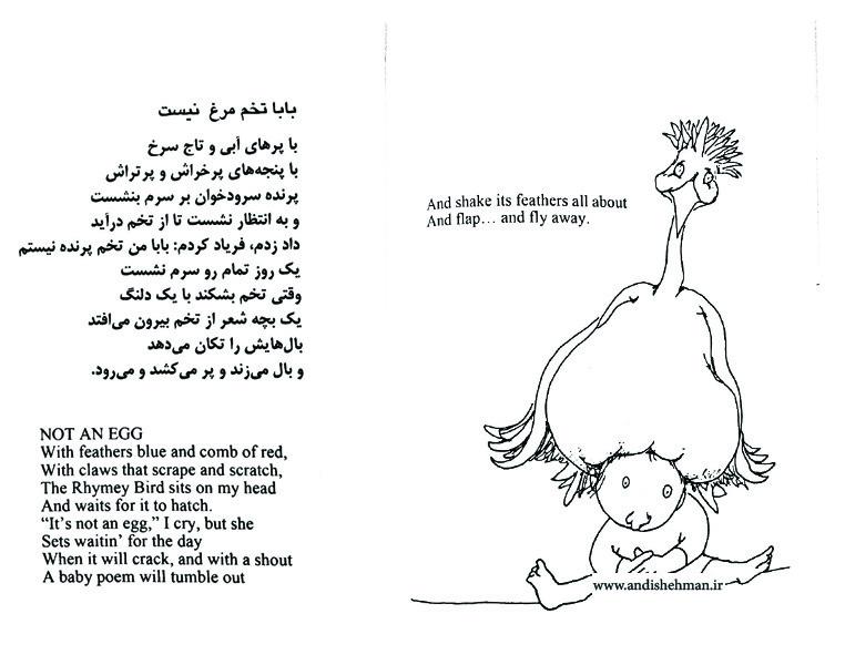 برگزیده ای از تصاویر کتاب «غلط کردم» از شل سیلور اشتاین
