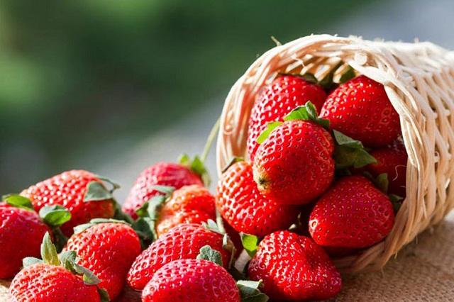 توتفرنگی ؛ ملکهی میوهها