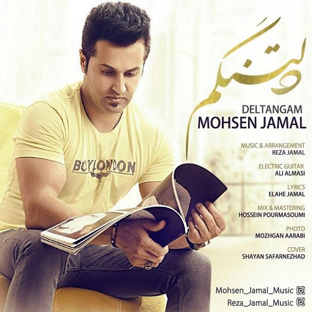 دانلود آهنگ جدید محسن جمال به نام دلتنگم