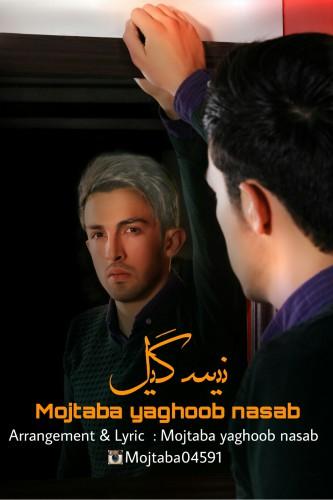 http://s8.picofile.com/file/8304740526/10Mojtaba_Yaghoob_Nasab_Nysgyl.jpg