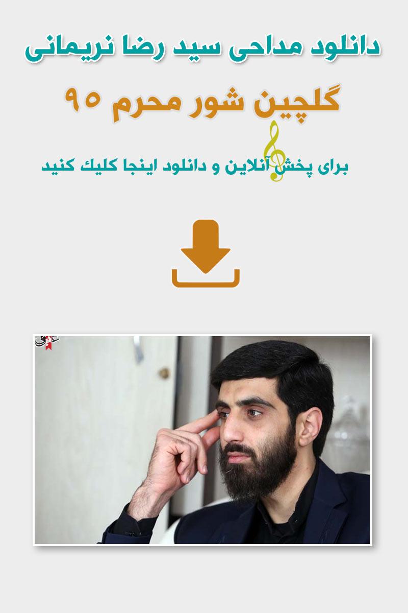 شور محرم 95 سید رضا نریمانی