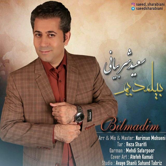 http://s8.picofile.com/file/8305989642/14Saeed_Sharabiani_Bilmadim.jpg