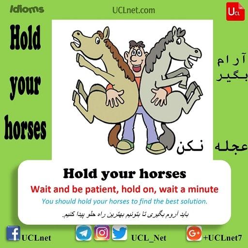 آرام بگیر – Hold your horses – اصطلاحات زبان انگلیسی – English Idioms