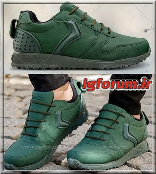 کفش مردانه رنگ سبز لجنی مارک اکو Ecco  پاراماتا