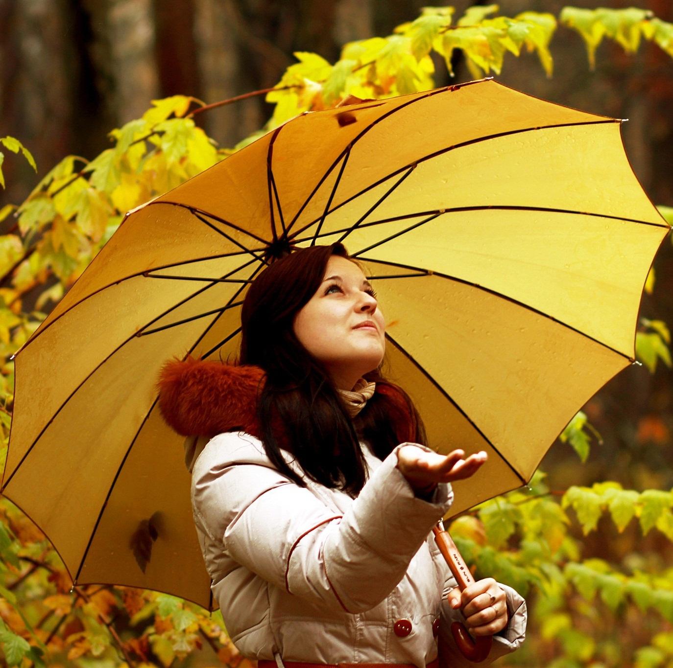 http://s8.picofile.com/file/8309797442/22Reqsane_ismayilova_Yagish_Yagir.jpg