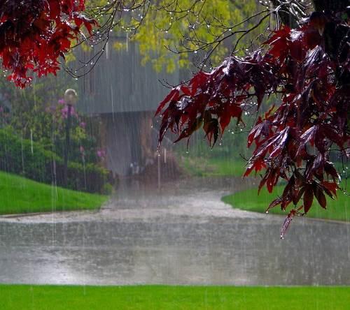 image result for ?باران + خدا + عشق + نور?