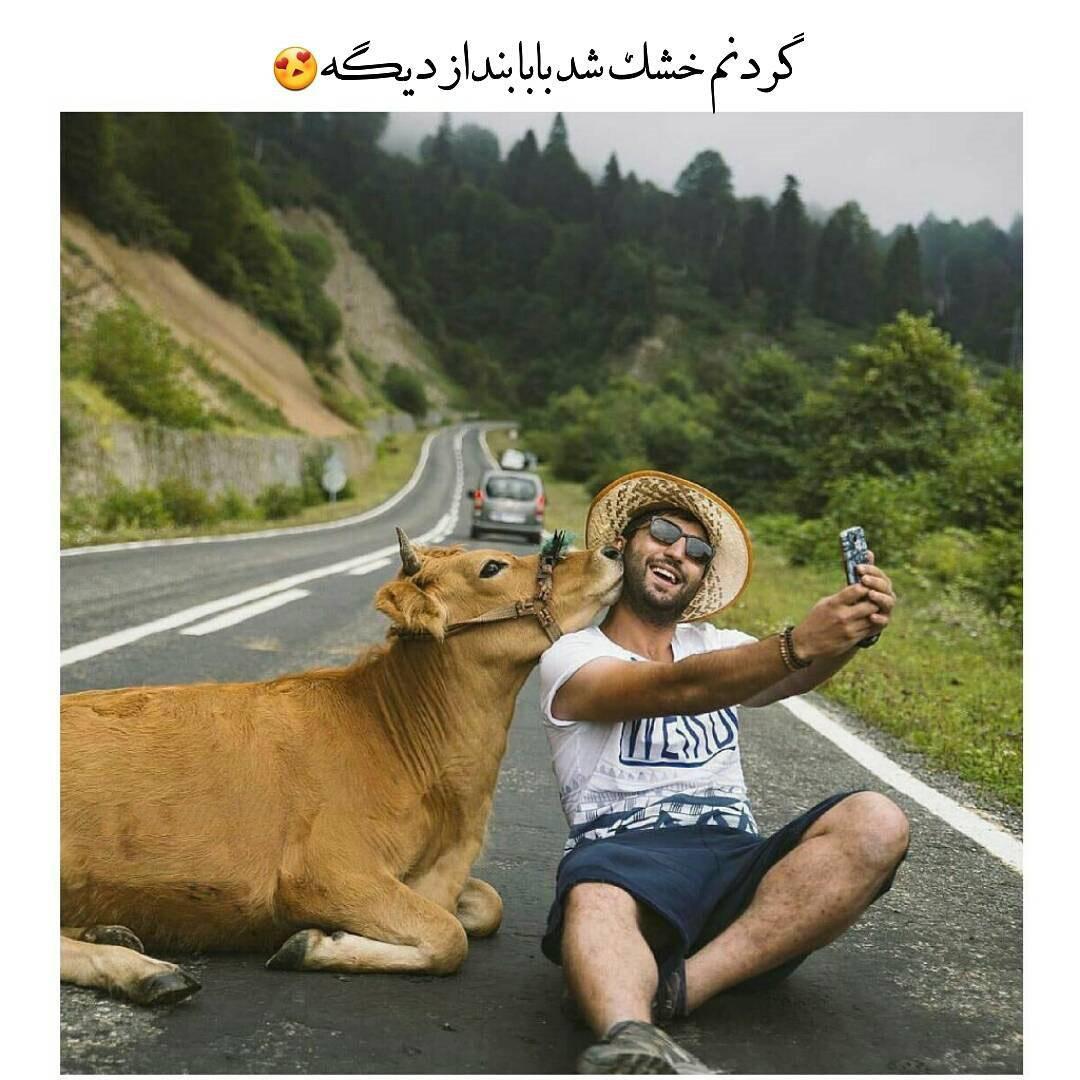 عکس های خنده دار جدید