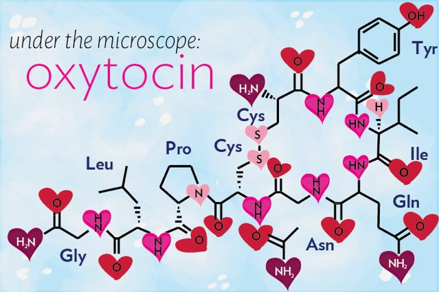 http://s8.picofile.com/file/8313250718/under_the_molecule_oxytocin_banner.jpg