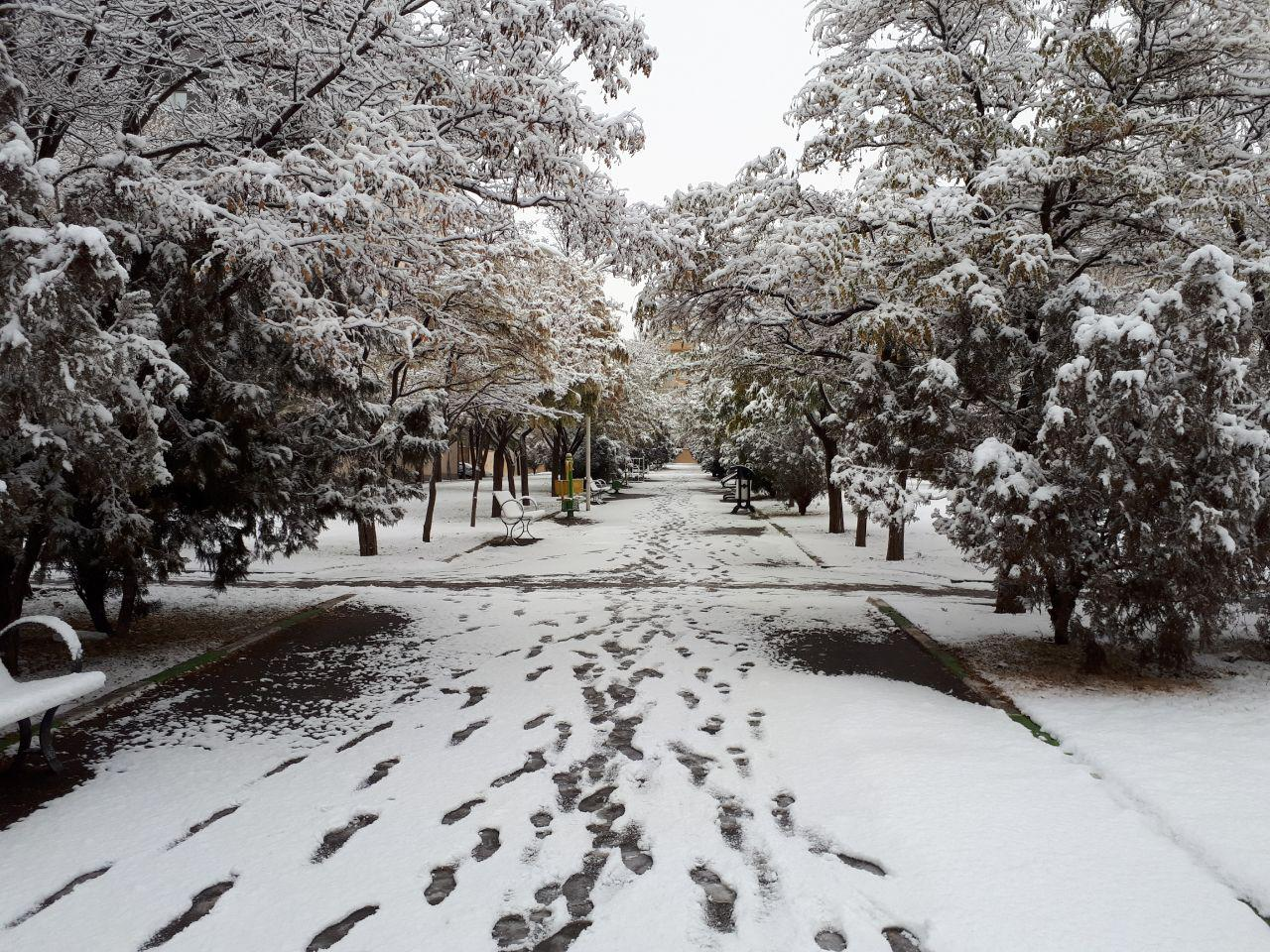 پارک تبریز
