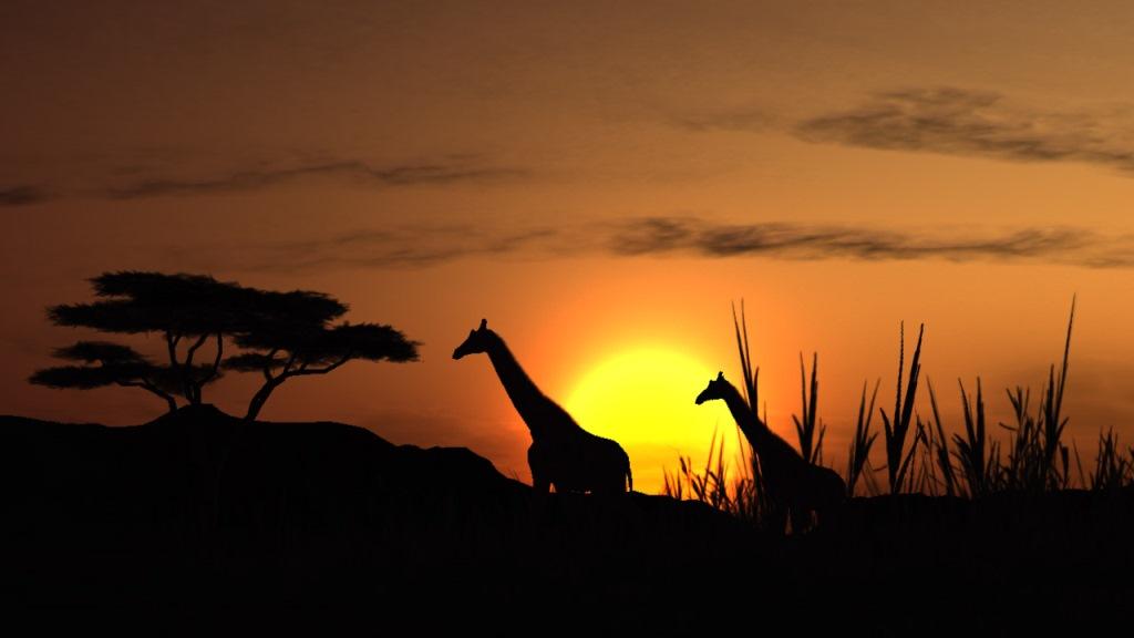 پارک ملی کروگر در آفریقای جنوبی
