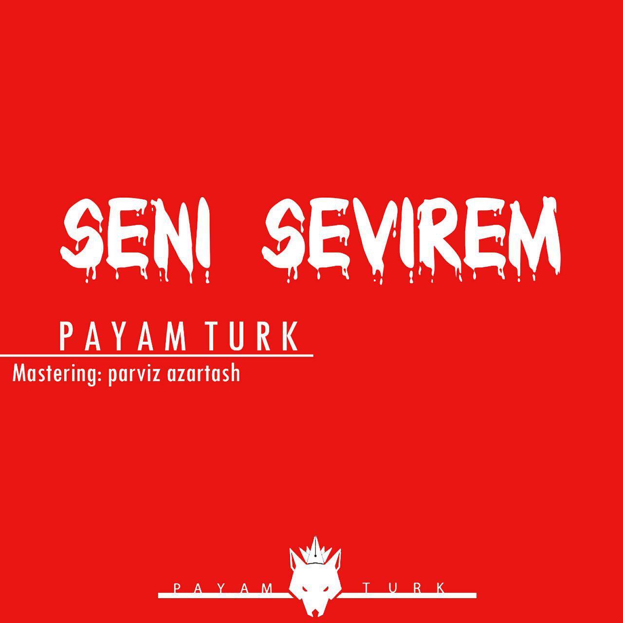 http://s8.picofile.com/file/8314134950/05Payam_Turk_Seni_Sevirem.jpg