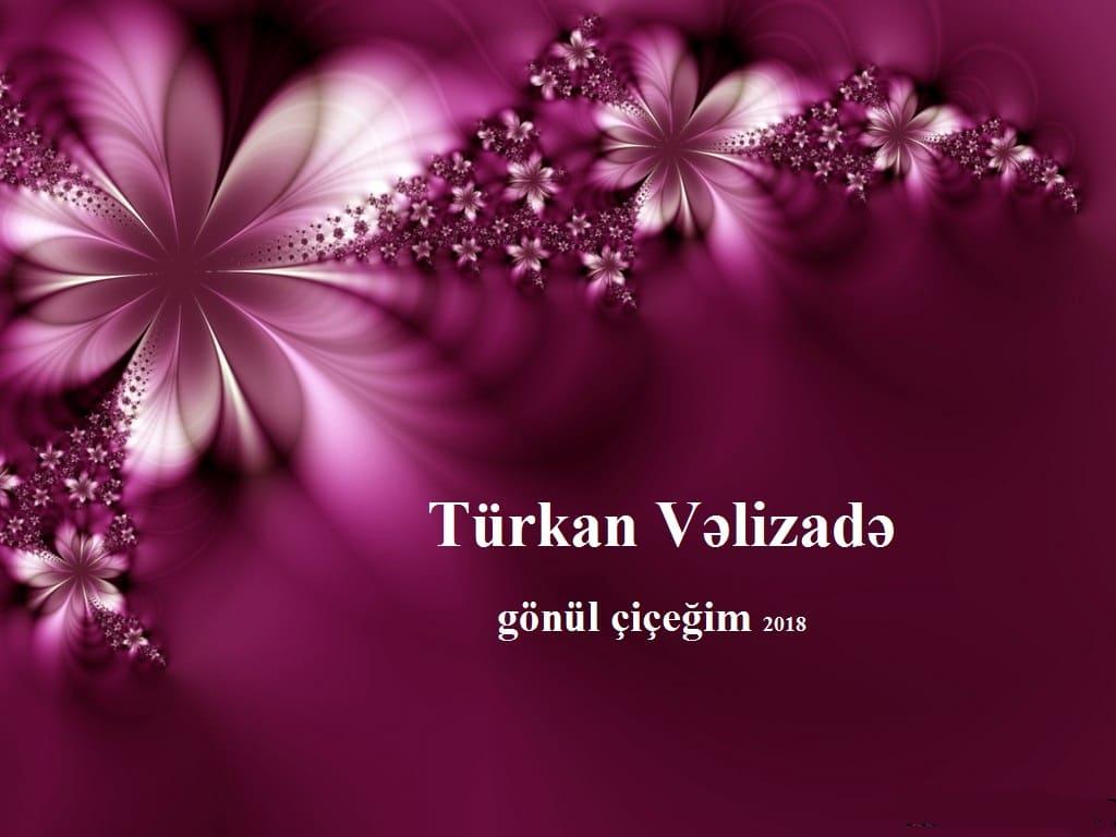 turkan_velizade