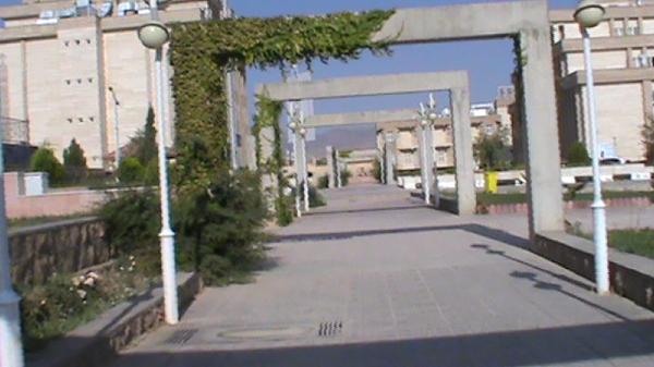 دانشگاه آزاد اسلامی واحد بیضا