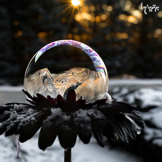 حبابهای یخ زده زیبا و شگفتانگیز