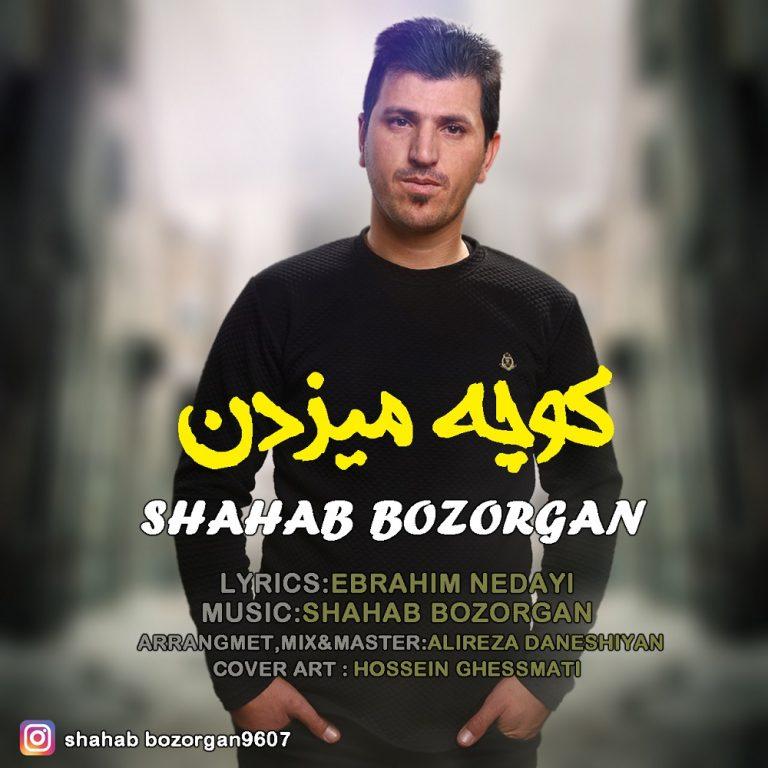 http://s8.picofile.com/file/8317167884/81Shahab_Bozorgan_Kochamizdan.jpg