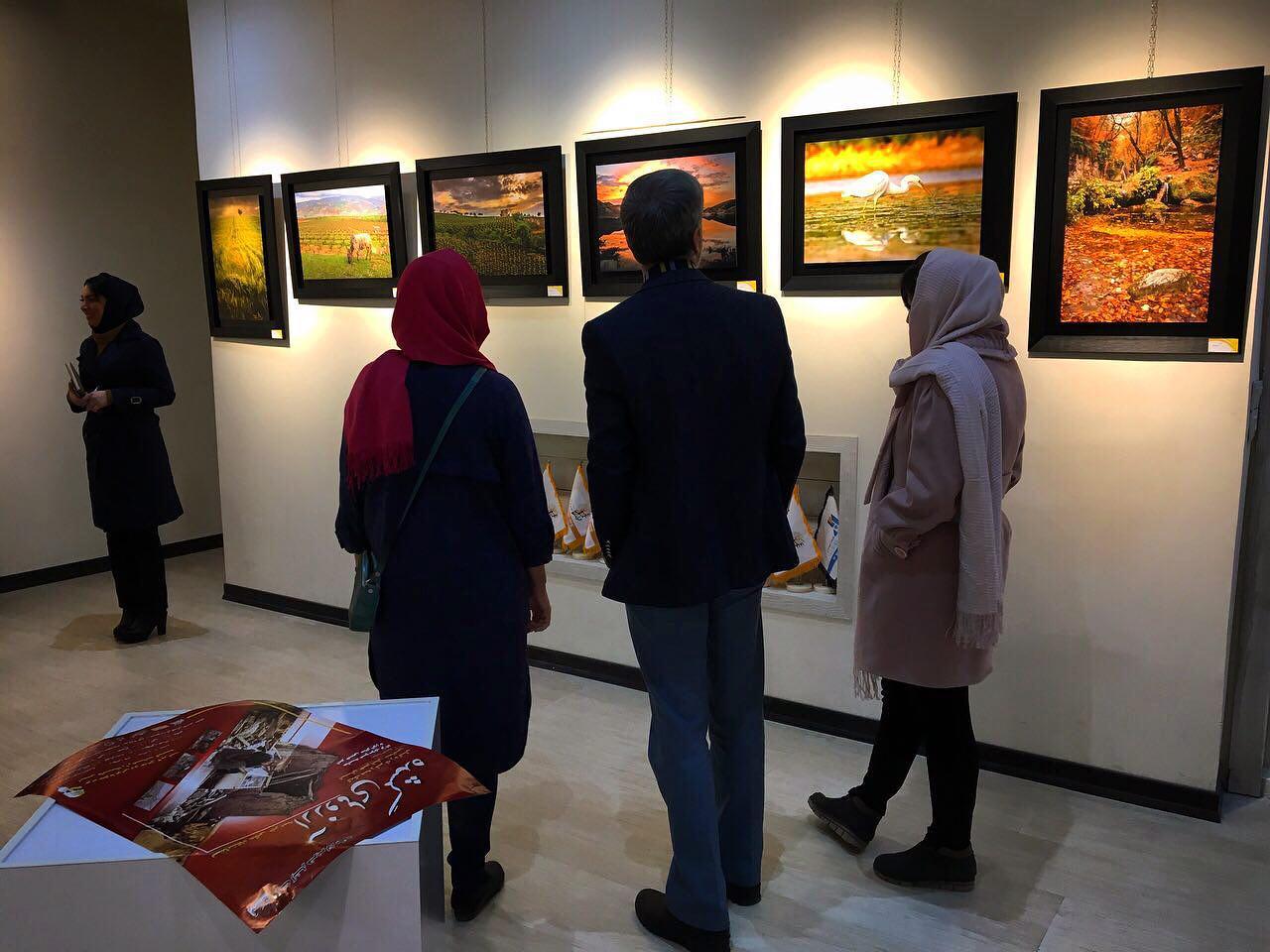 نمایشگاه خیریه عکس
