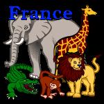 دانلود بازی رایگان ایرانی آموزشی نام حیوانات به فرانسوی برای کامپیوتر