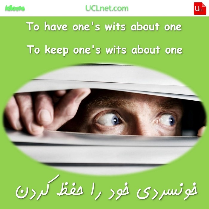 خونسردی و آرامش خود را حفظ کردن -have (or keep) one's wits about one - اصطلاحات زبان انگلیسی - English Idioms