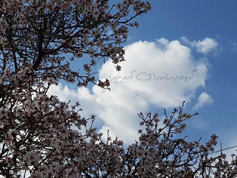 به گل نشستن درختان درآبیز
