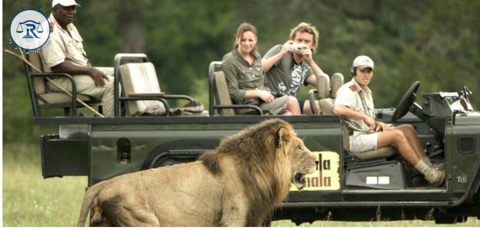 بازدید توریستها از جانوران متنوع