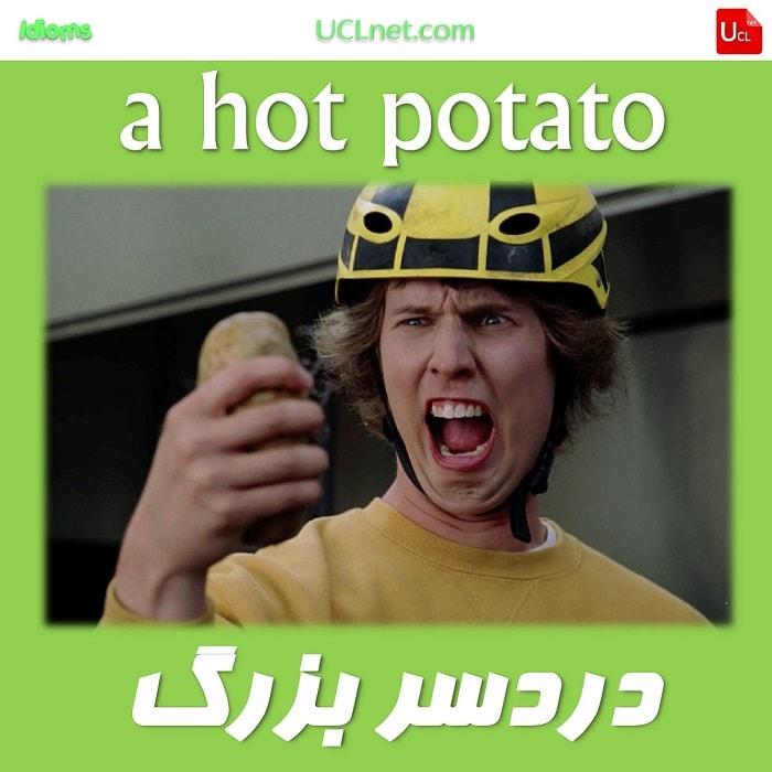 مایه ی دردسر - hot potato