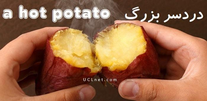 دردسر بزرگ - a hot potato