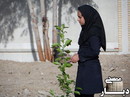 برنامه روز درختکاری در مدرسه شبانه روزی گچگران