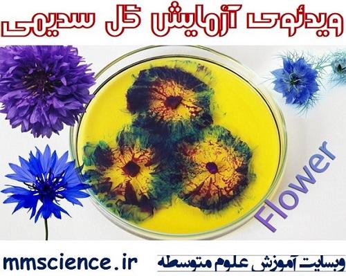 ویدئوی آزمایش گل سدیمی