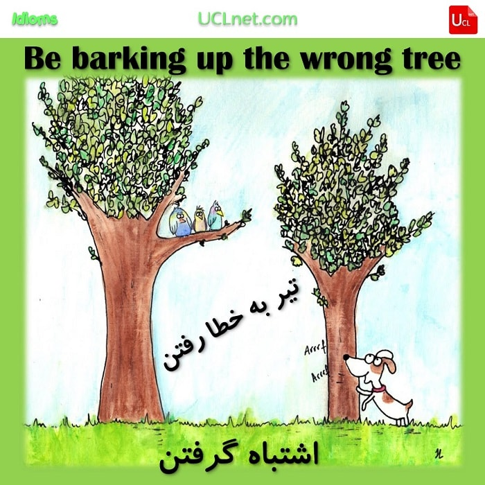 تیر به خطا رفتن – Be barking up the wrong tree – اصطلاحات زبان انگلیسی – English Idioms