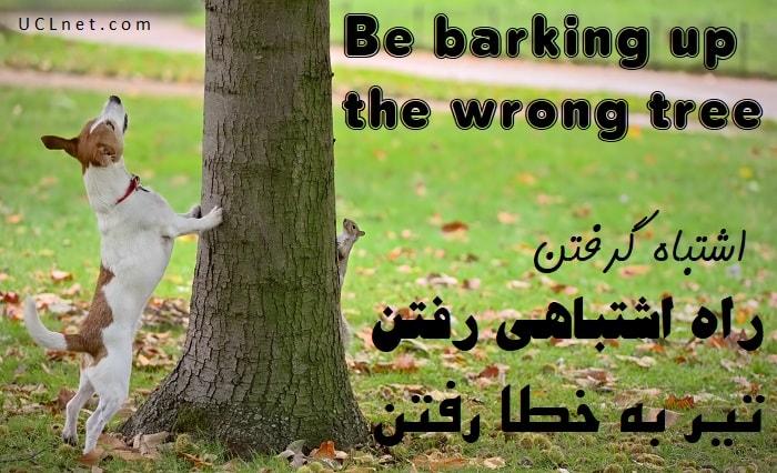 اشتباه گرفتن – Be barking up the wrong tree – اصطلاحات زبان انگلیسی – English Idioms