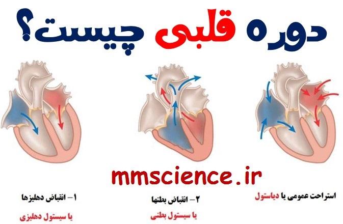 دوره قلبی چیست؟