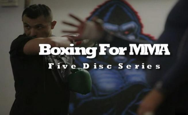 دانلود بسته ی اموزشی بوکس برای  ام ام ای |SBGi - Boxing for MMA