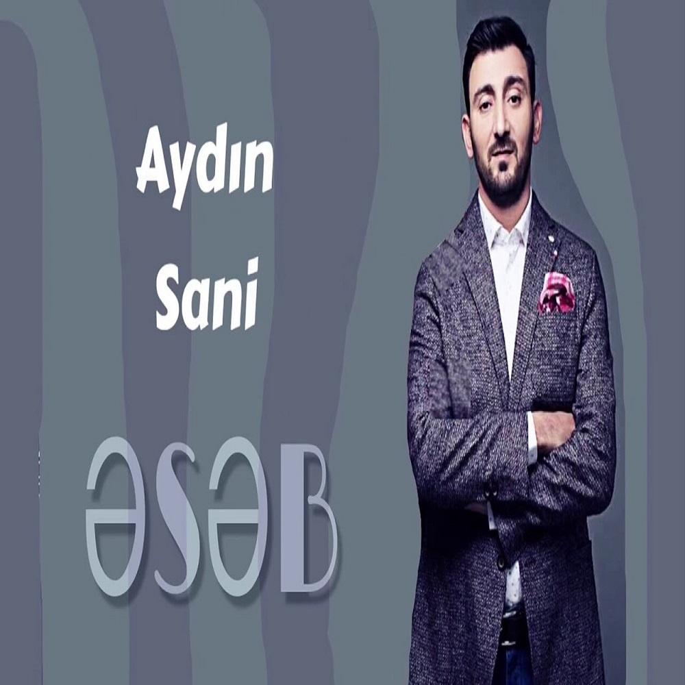 http://s8.picofile.com/file/8327237442/01Aydn_Sani_Eseb.jpg