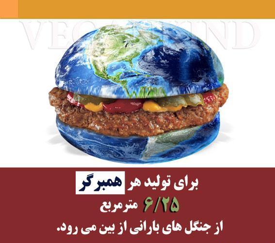 تاثیر گوشت خواری بر محیط زیست