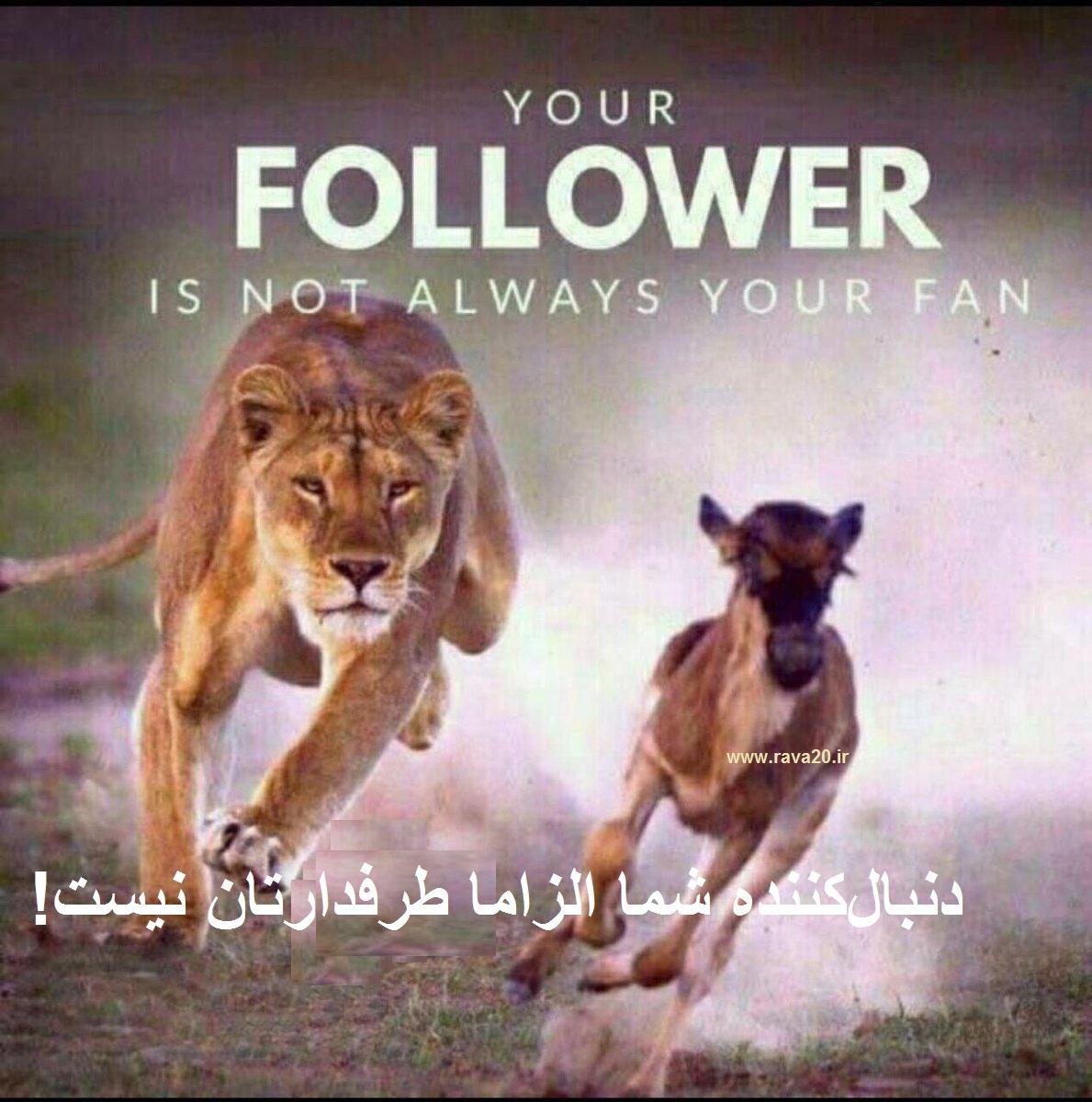 دنبالکننده شما الزاما طرفدارتان نیست!