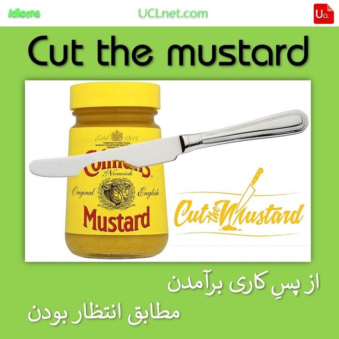از پسِ کاری برآمدن - مطابق انتظار بودن – Cut the mustard – اصطلاحات زبان انگلیسی – English Idioms