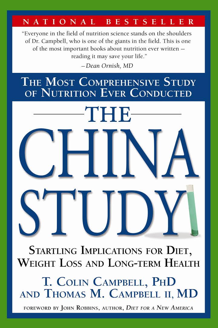 china_study.jpeg