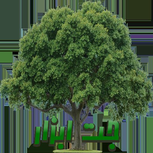 ترنسپرنت درخت