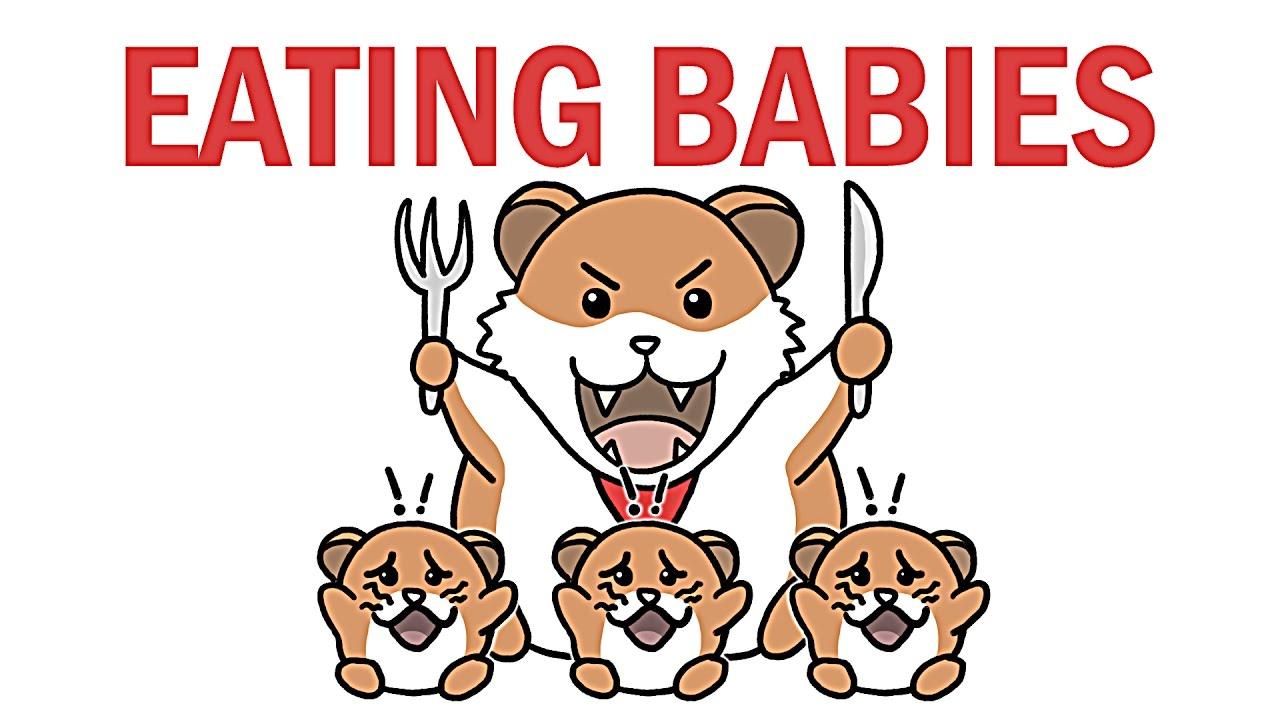 چرا همستر بچه هاشو میخوره؟