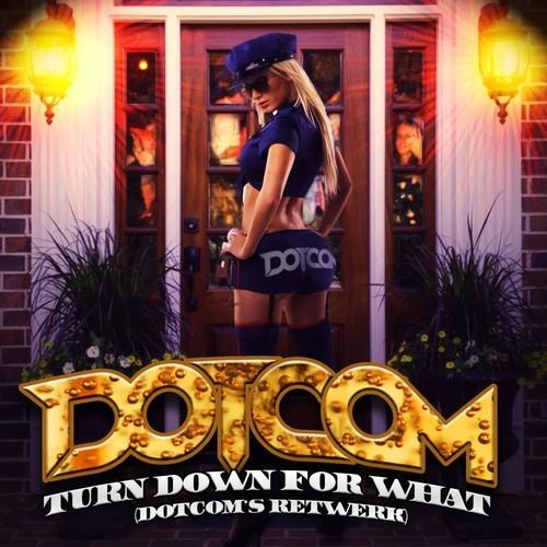 دانلود ریمیکس اهنگ DJ Snake - Turn Down For What از Dotcom