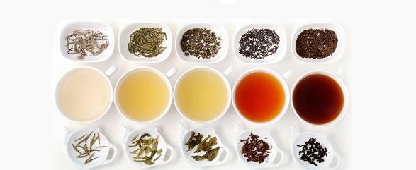 معرفی ۵ نوع چای برای پیشگیری از ابتلا به یبوست مزمن