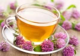 گیاهان دارویی برای سرماخوردگی