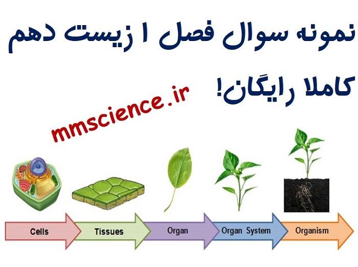 نمونه سوال فصل 1 زیست دهم