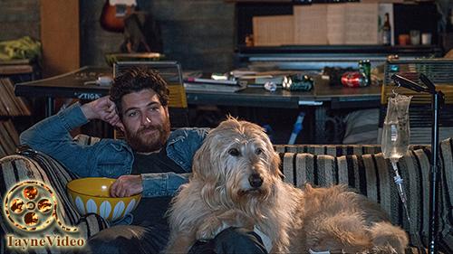 دانلود فیلم Dog Days روزهای سگی 2018 زیرنویس فارسی و لینک مستقیم