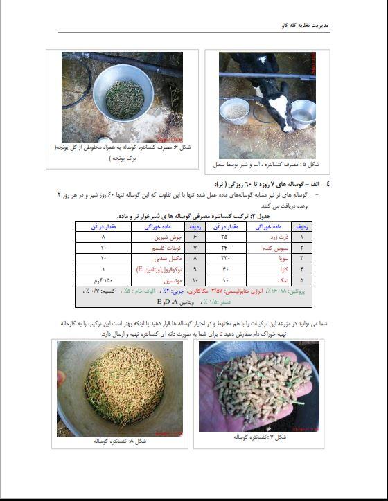 دانلود جزوه تغذیه گاوهای شیری ، کتاب تغذیه گاوهای شیری ، دانلود جزوه مدیریت تغذیه گاو های شیری pdf