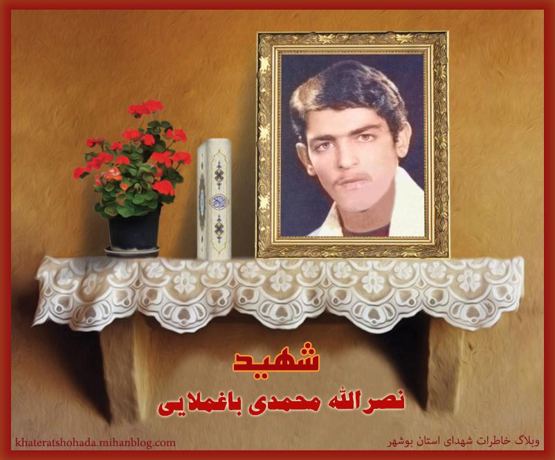 شهید نصرالله محمدی باغملایی