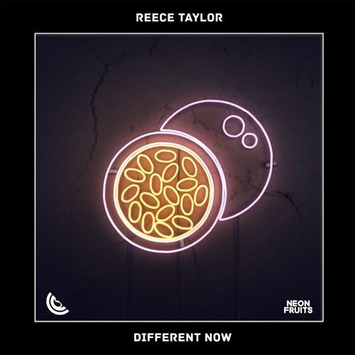 دانلود اهنگ Reece Taylor به نام Different Now