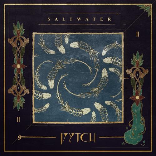 دانلود اهنگ Fytch به نام Saltwater