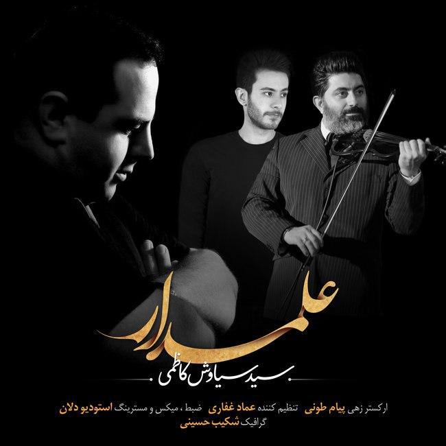 http://s8.picofile.com/file/8337856426/19Siavash_Kazemi_Alamdar.jpg